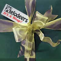 Melodeers : It's a Wrap : 00  1 CD : Jim Arns :