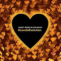 Sweet Honey In The Rock : Loveinevolution : 00  1 CD : 611587114020 : APLE1140.2